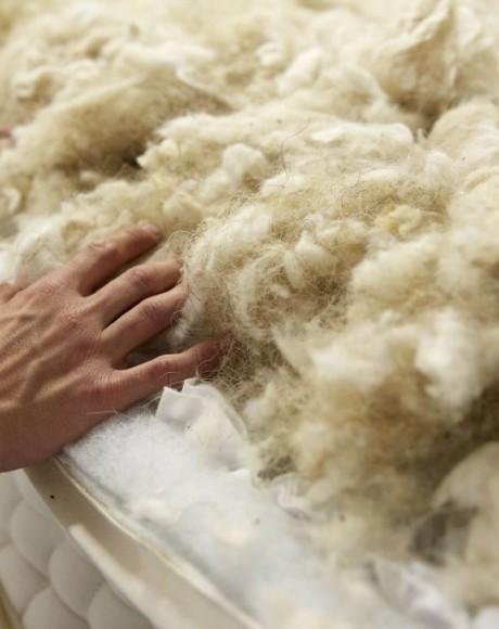 Lambs Wool
