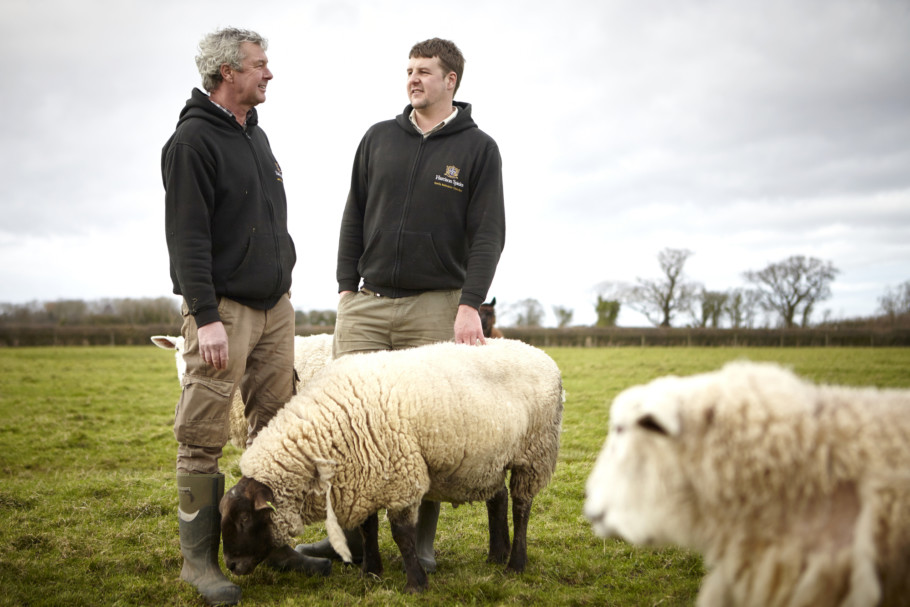 Farmers Gary Liam With The Sheep On The Harrison Spinks Farm