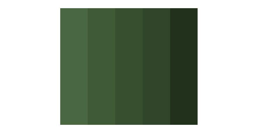 Forest Colour Palette