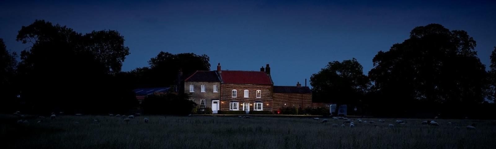 Hornington Dark