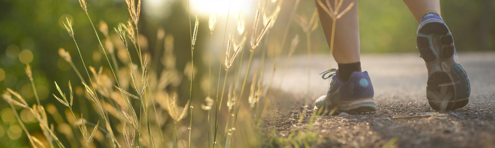 Shutterstock 601590215