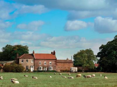 Our Stoy Farm Shot
