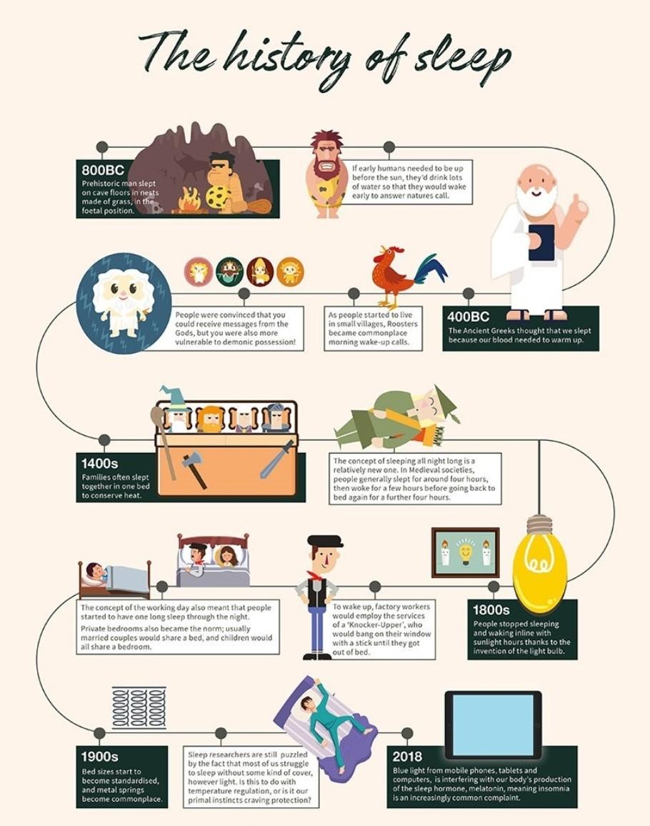 Herdysleep History of Sleep Infographic Sept18 S7